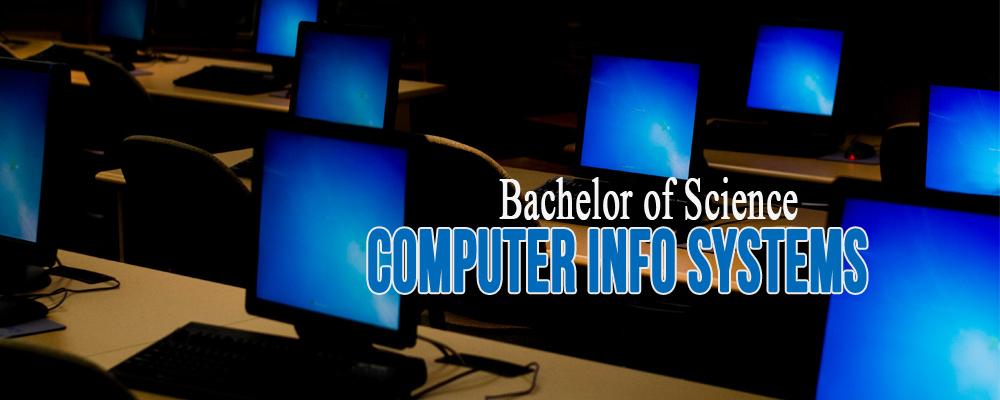 Picture of Bachelor of Science Computer Information Systems